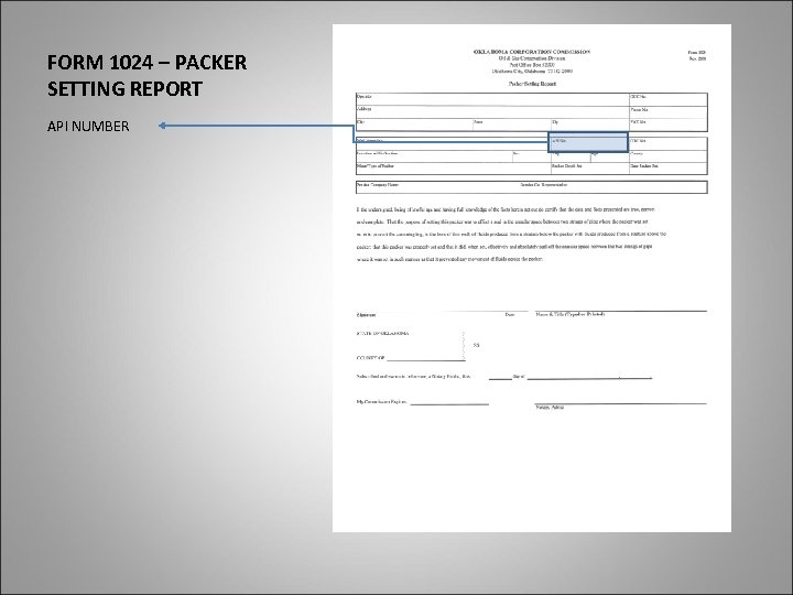 FORM 1024 – PACKER SETTING REPORT API NUMBER