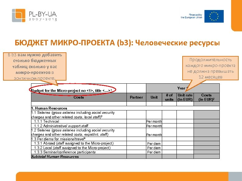 БЮДЖЕТ МИКРО-ПРОЕКТА (b 3): Человеческие ресурсы В b 3 вам нужно добавить столько бюджетных