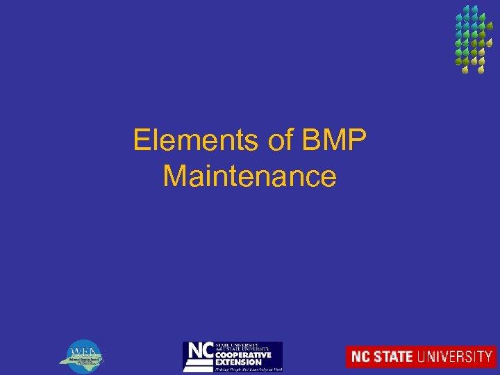 Elements of BMP Maintenance