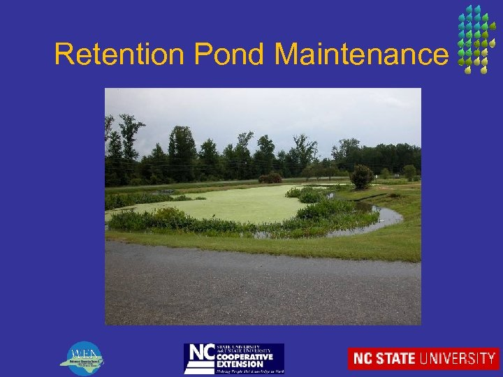 Retention Pond Maintenance