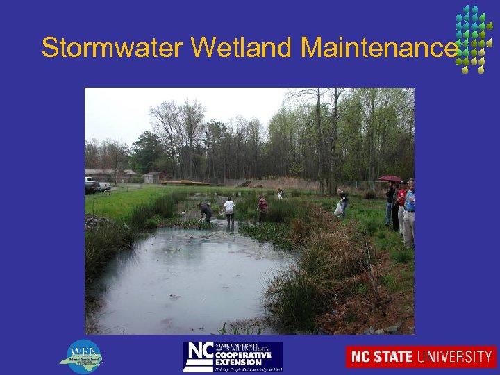 Stormwater Wetland Maintenance