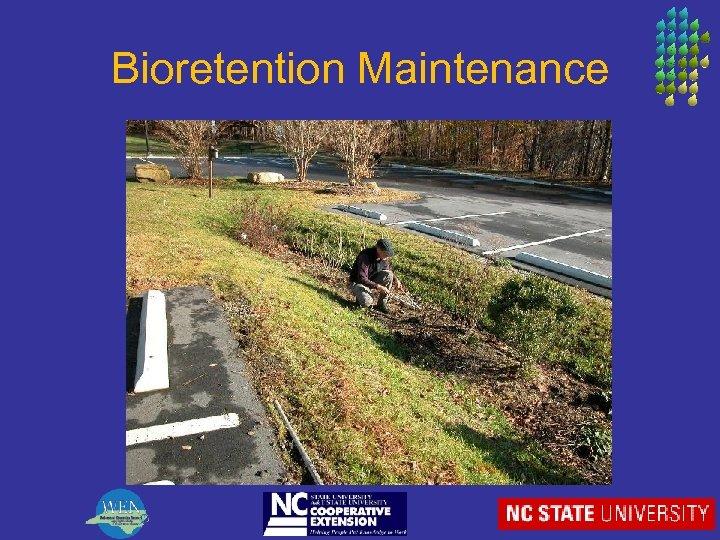 Bioretention Maintenance