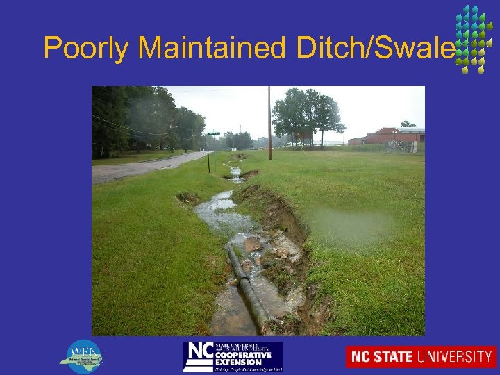 Poorly Maintained Ditch/Swale