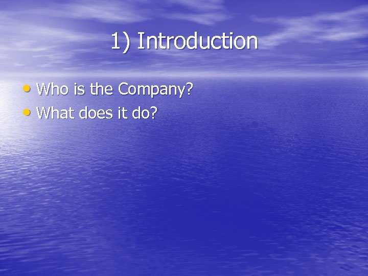 1) Introduction • Who is the Company? • What does it do?