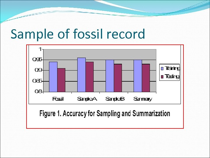 Sample of fossil record