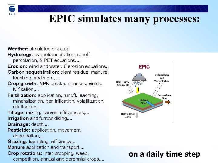 EPIC simulates many processes: Weather: simulated or actual Hydrology: evapotranspiration, runoff, percolation, 5 PET