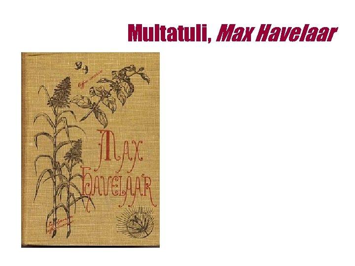 Multatuli, Max Havelaar