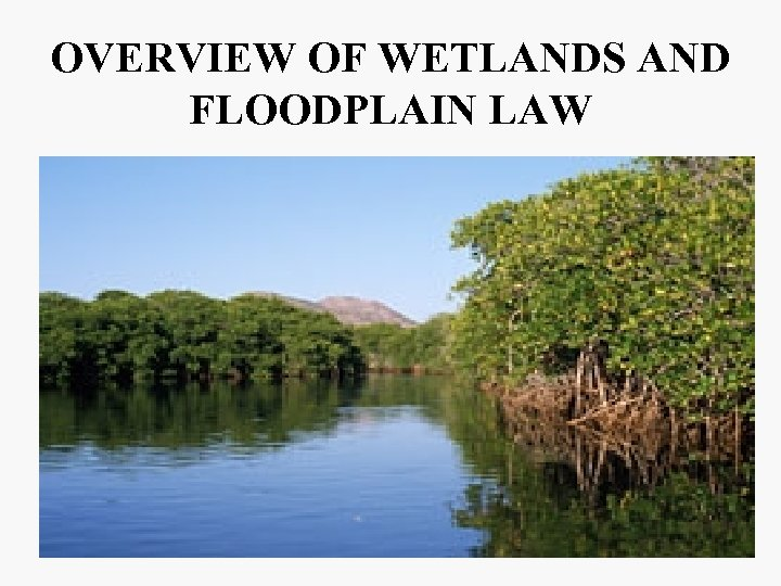 OVERVIEW OF WETLANDS AND FLOODPLAIN LAW