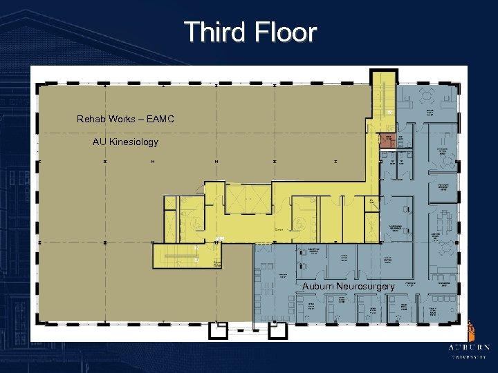Third Floor Rehab Works – EAMC AU Kinesiology Auburn Neurosurgery