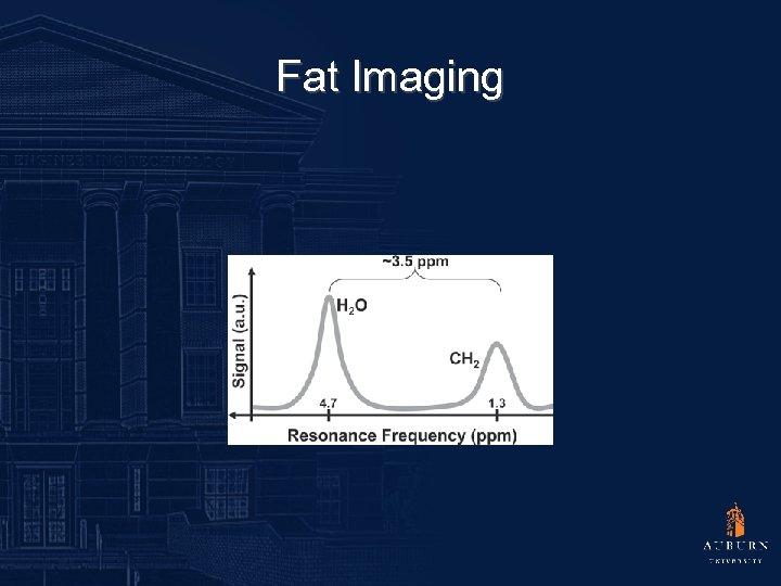 Fat Imaging