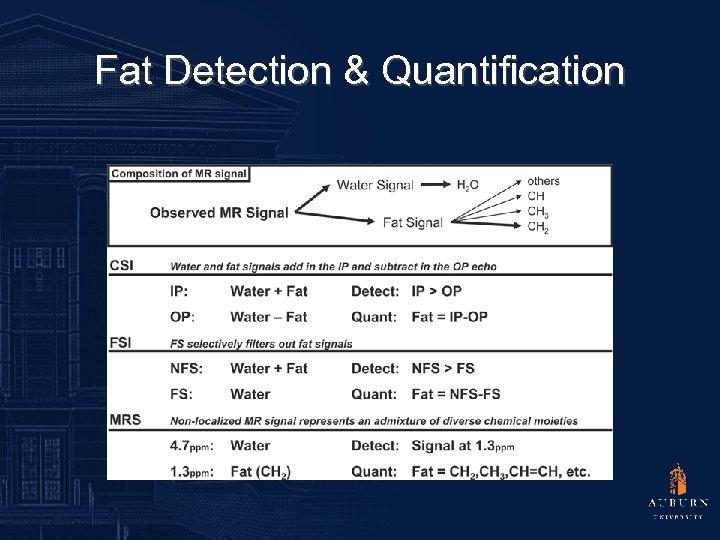 Fat Detection & Quantification