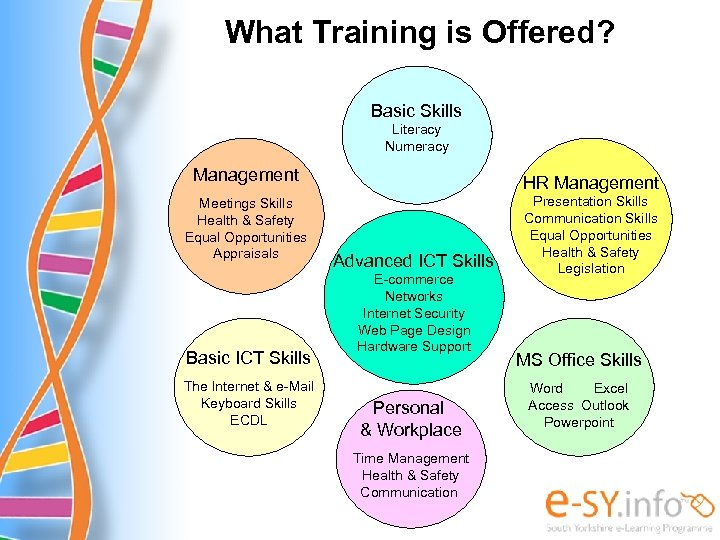 What Training is Offered? Basic Skills Literacy Numeracy Management Meetings Skills Health & Safety