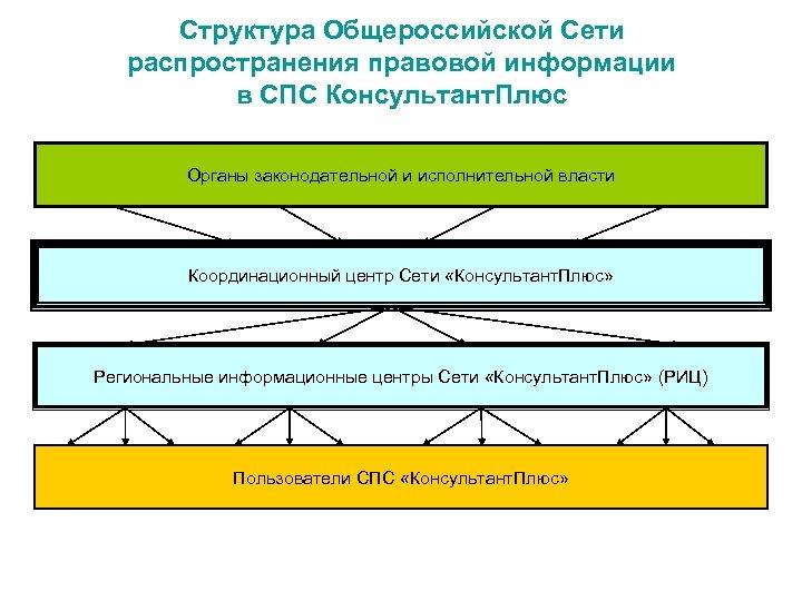 Структура Общероссийской Сети распространения правовой информации в СПС Консультант. Плюс Органы законодательной и исполнительной