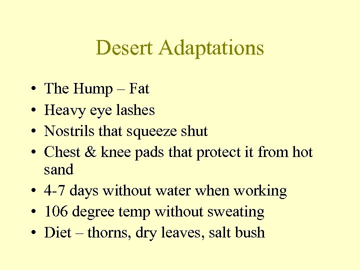 Desert Adaptations • • The Hump – Fat Heavy eye lashes Nostrils that squeeze