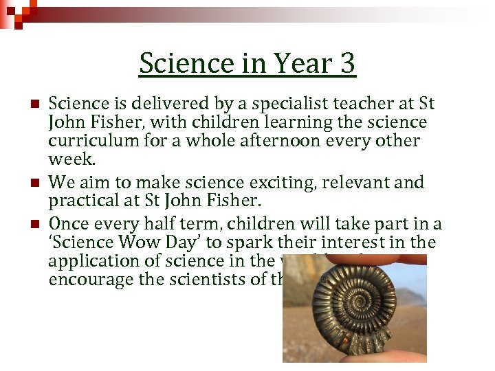 Science in Year 3 n n n Science is delivered by a specialist teacher