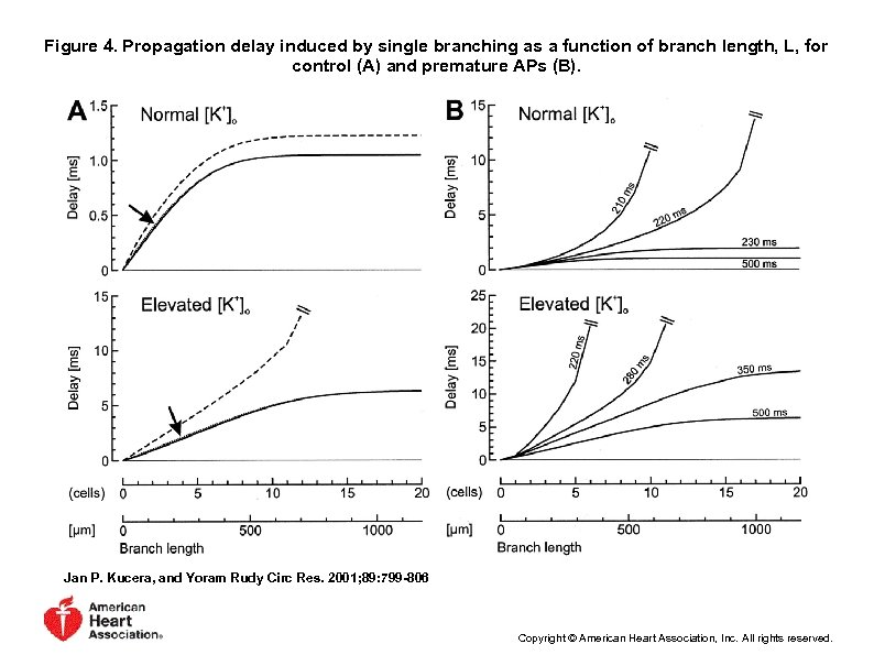 Figure 4. Propagation delay induced by single branching as a function of branch length,