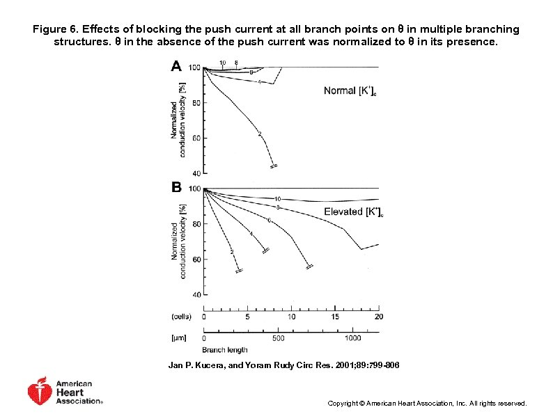 Figure 6. Effects of blocking the push current at all branch points on θ