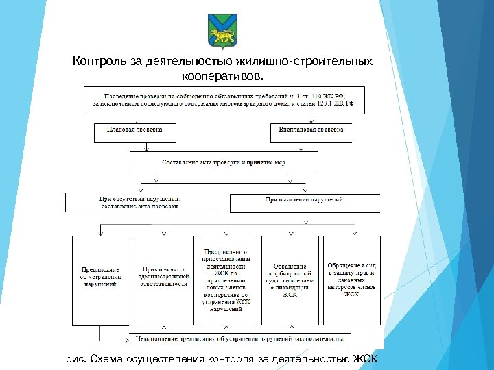 Контроль за деятельностью жилищно-строительных кооперативов. рис. Схема осуществления контроля за деятельностью ЖСК