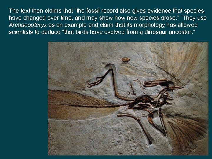 """The text then claims that """"the fossil record also gives evidence that species have"""