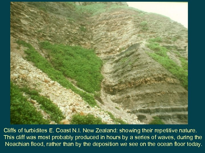 Cliffs of turbidites E. Coast N. I. New Zealand: showing their repetitive nature. This