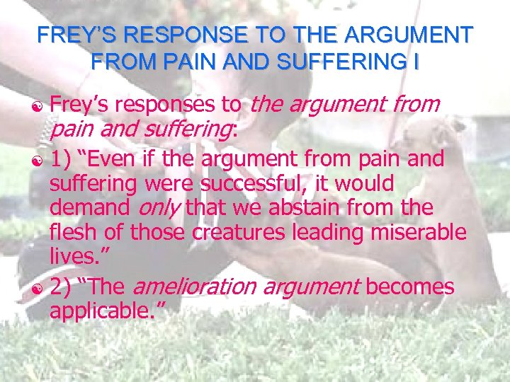 FREY'S RESPONSE TO THE ARGUMENT FROM PAIN AND SUFFERING I Frey's responses to the