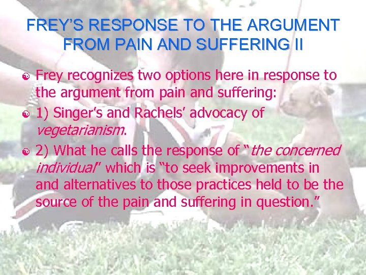 FREY'S RESPONSE TO THE ARGUMENT FROM PAIN AND SUFFERING II [ [ [ Frey