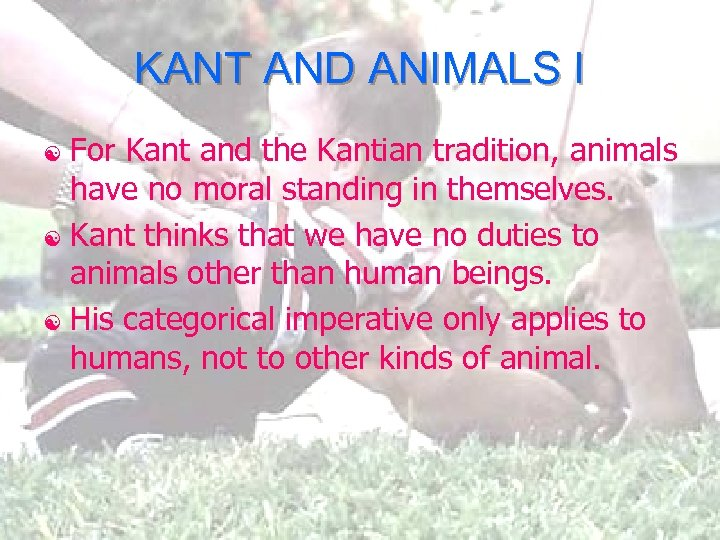 KANT AND ANIMALS I For Kant and the Kantian tradition, animals have no moral