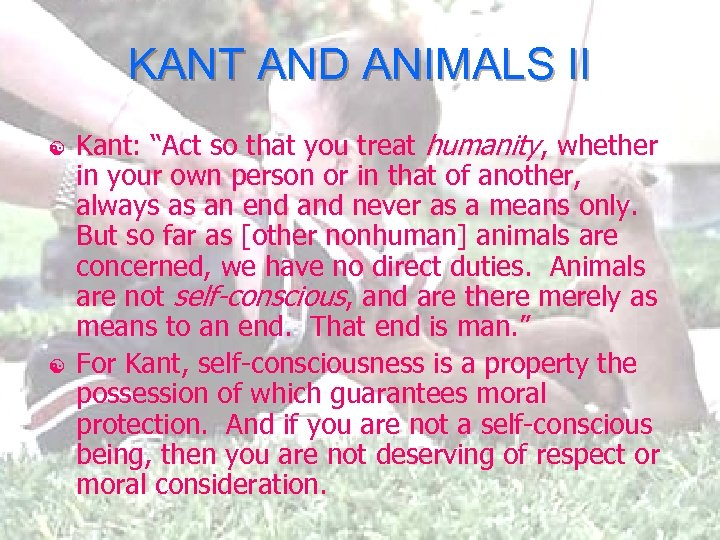 "KANT AND ANIMALS II [ [ Kant: ""Act so that you treat humanity, whether"
