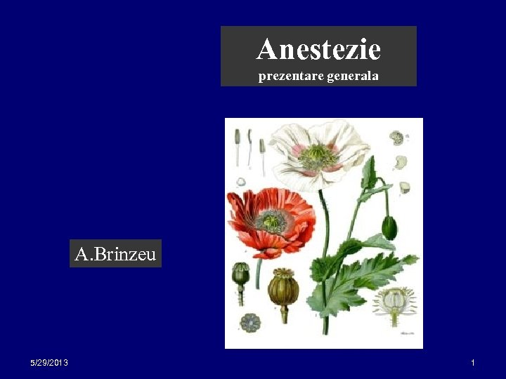 Anestezie prezentare generala A. Brinzeu 5/29/2013 1
