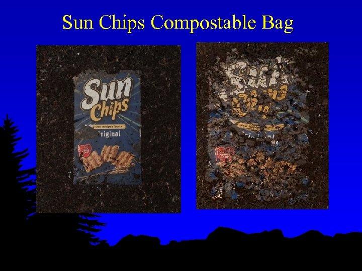 Sun Chips Compostable Bag