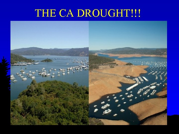 THE CA DROUGHT!!!