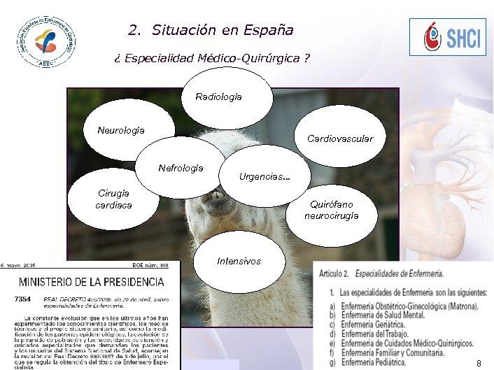 2. ACADEMIA Situación en España ¿ Especialidad Médico-Quirúrgica ? Radiología Neurología Cardiovascular Nefrología Urgencias.