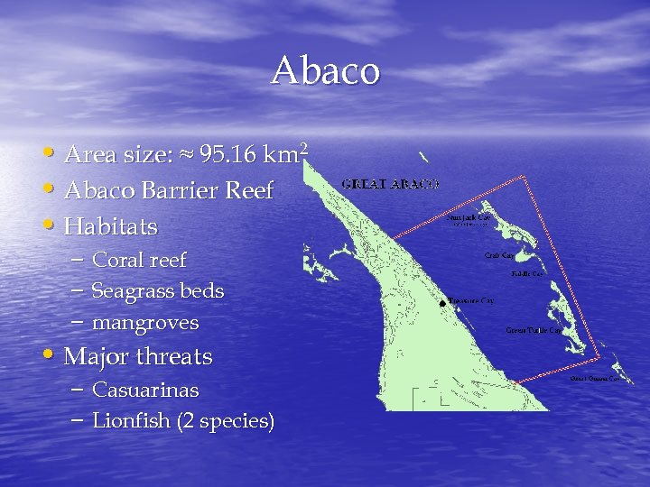 Abaco • Area size: ≈ 95. 16 km 2 • Abaco Barrier Reef •