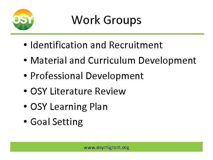 Work Groups • Identification and Recruitment • Material and Curriculum Development • Professional Development