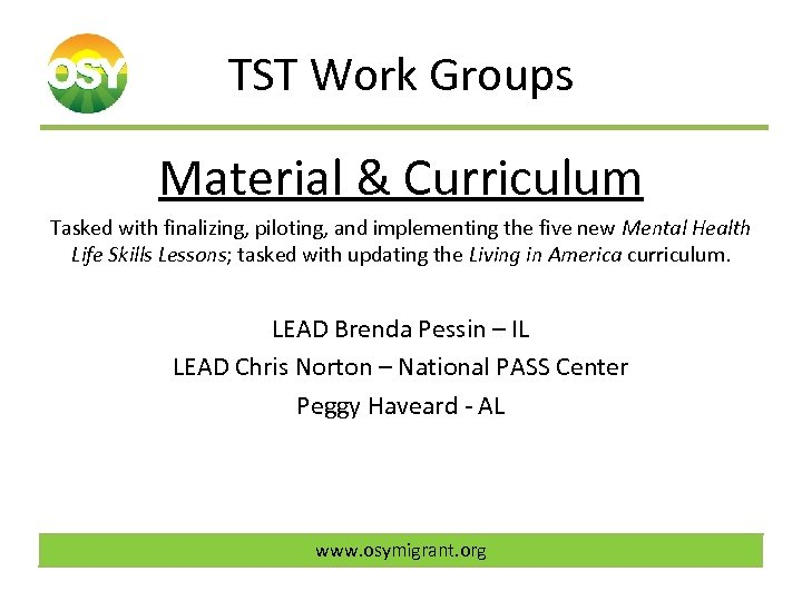 TST Work Groups Material & Curriculum Tasked with finalizing, piloting, and implementing the five