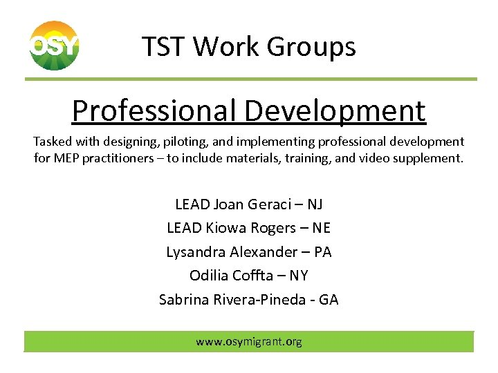 TST Work Groups Professional Development Tasked with designing, piloting, and implementing professional development for