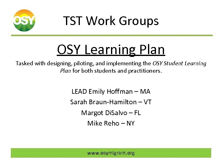 TST Work Groups OSY Learning Plan Tasked with designing, piloting, and implementing the OSY
