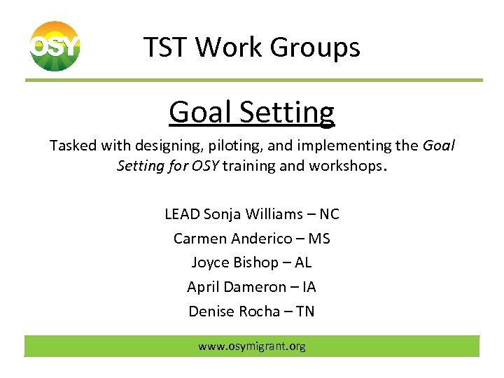 TST Work Groups Goal Setting Tasked with designing, piloting, and implementing the Goal Setting