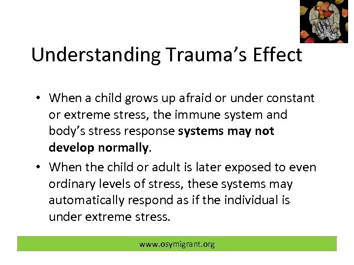 Understanding Trauma's Effect • When a child grows up afraid or under constant or