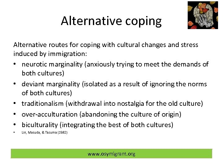 Alternative coping Alternative routes for coping with cultural changes and stress induced by immigration: