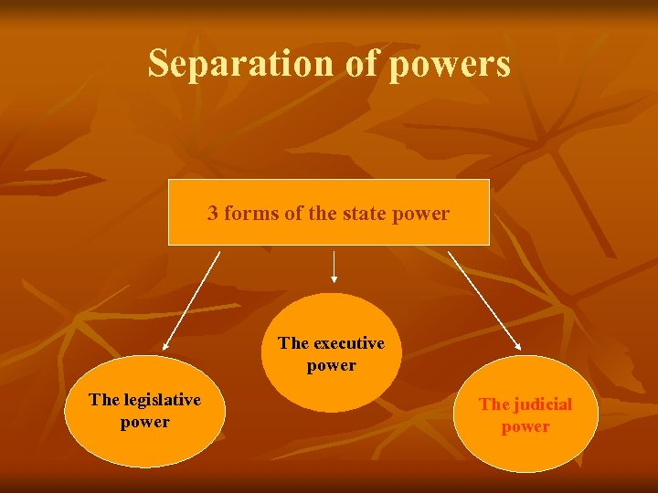Separation of powers 3 forms of the state power The executive power The legislative