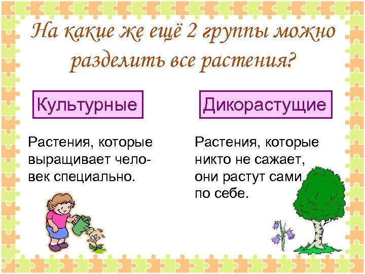 На какие же ещё 2 группы можно разделить все растения? Культурные Растения, которые выращивает