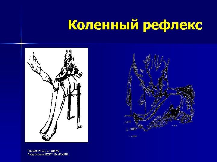 Коленный рефлекс Таиров М. Ш. , 1 - Центр
