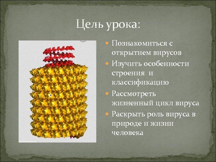 Цель урока: Познакомиться с открытием вирусов Изучить особенности строения и классификацию Рассмотреть жизненный цикл