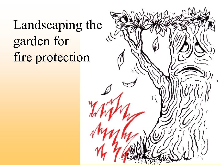 Landscaping the garden for fire protection