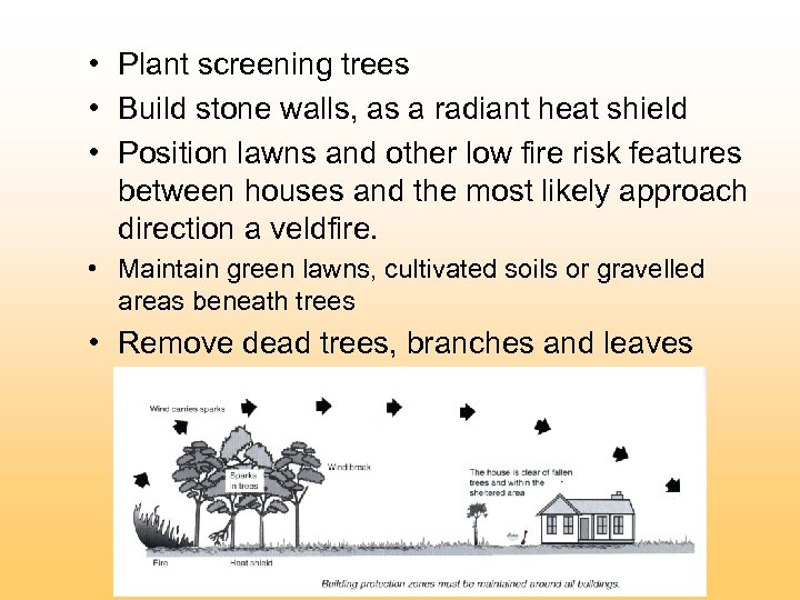 • Plant screening trees • Build stone walls, as a radiant heat shield