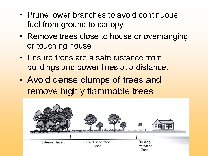 • Prune lower branches to avoid continuous fuel from ground to canopy •