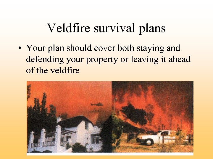 Veldfire survival plans • Your plan should cover both staying and defending your property