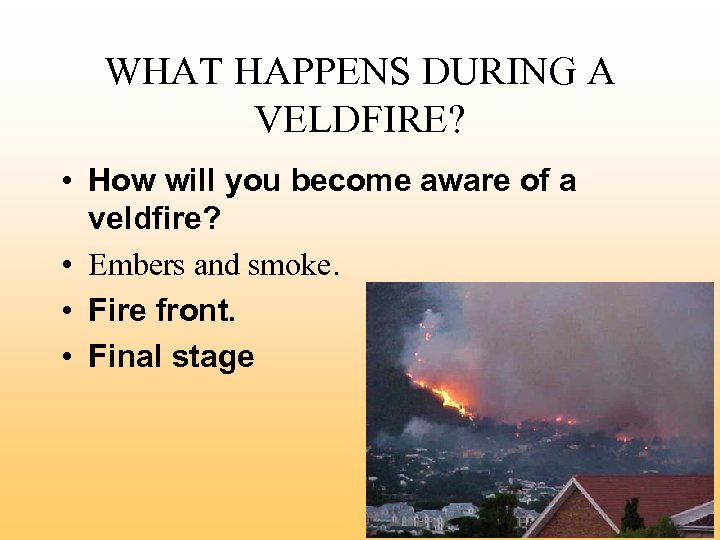 WHAT HAPPENS DURING A VELDFIRE? • How will you become aware of a veldfire?