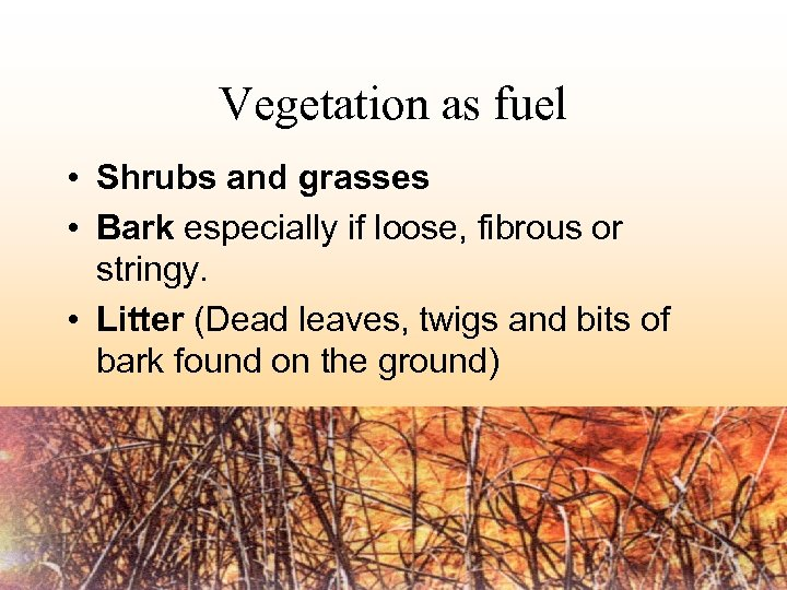 Vegetation as fuel • Shrubs and grasses • Bark especially if loose, fibrous or